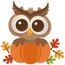 owl popping out of a pumpkin
