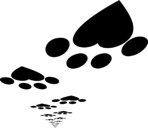 trail of heart paw prints