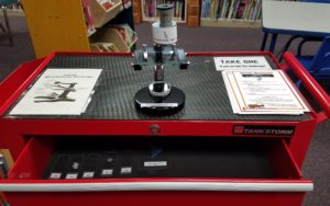 Microscope station at Berryville Library